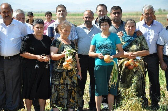 Introduction of new seed varieties through demonstration plots with seed dealers