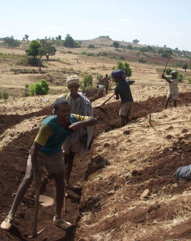 Community Organizations and Mobilization for Soil and Water Conservation Work (COM-SWC)