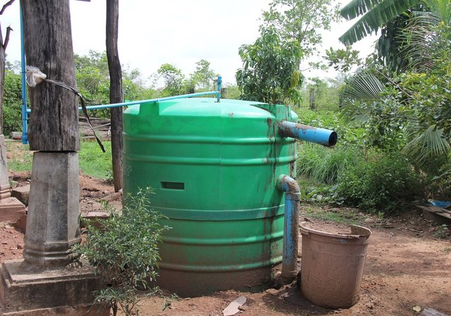 Using slurry from biodigester for soil improvement