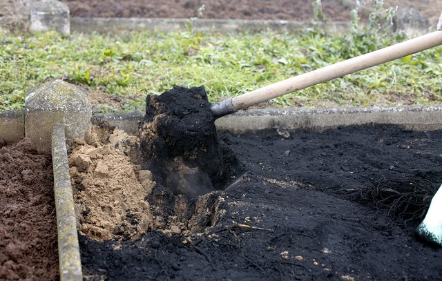 Biochar application as a soil amendment