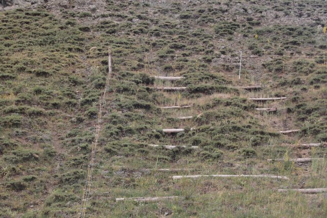 Slope erosion control using wooden pile walls