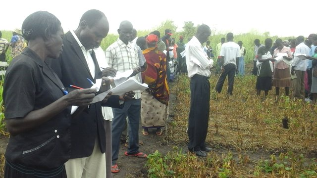 Participatory Monitoring and Evaluation of Demonstration Plots