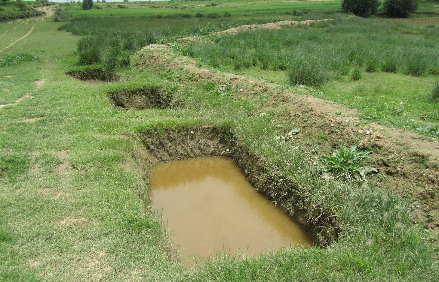 Large dimension soil faced deep trench bunds in grazing land