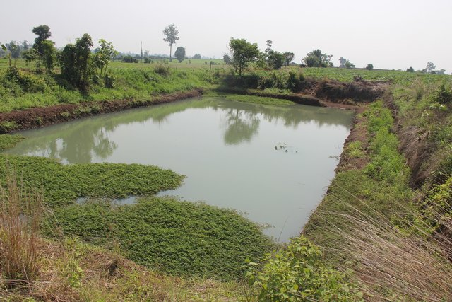 On-farm ponds to alleviate the potential impact of seasonal droughts and for increasing crop cultivation and aquaculture