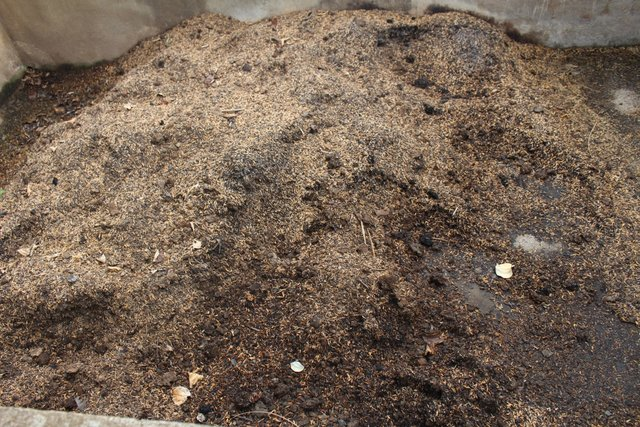 Making compost to improve soil fertility in vegetable home gardens