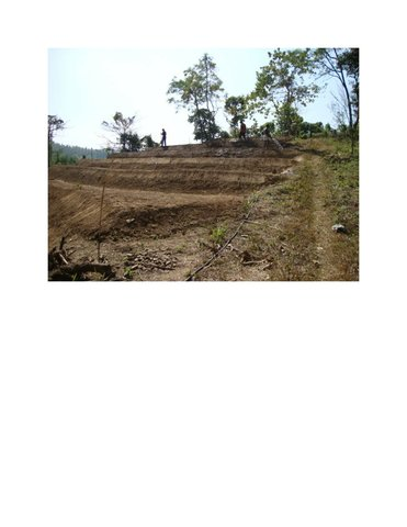 Soil Conservation Through Bench Terrace Technology in Highly Degradable Hilly Slopy Areas of Bangladesh
