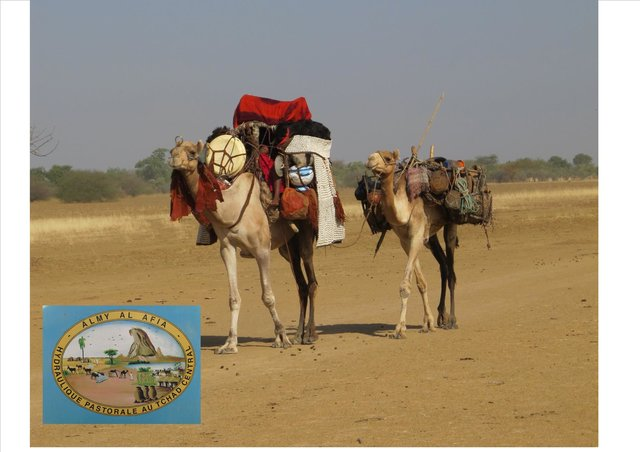 Securing the mobility of pastoralism through consultation and access to water sources