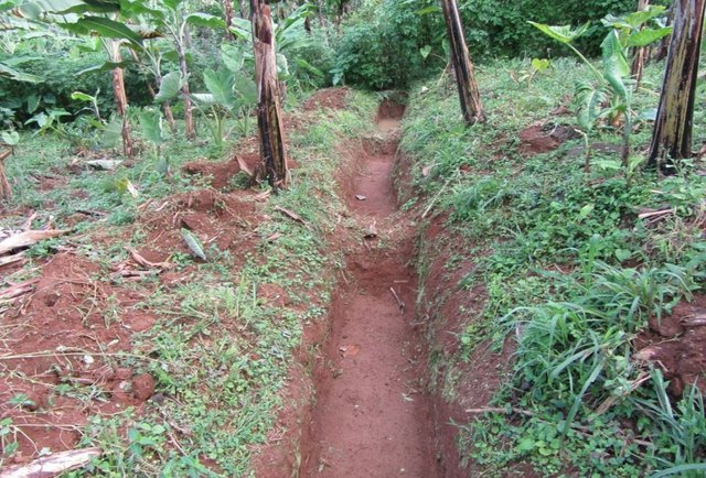 Runoff Water Harvesting Contour Trenches and Pits in Hilly areas