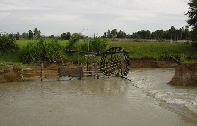 Irrigation of paddy fields using water-pumping wheels (Norias)